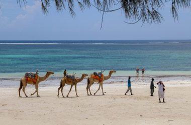 Diani Best Places To Visit