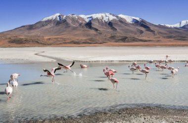 La Paz Best Places To Visit