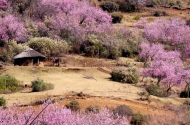 MASERU Best Places To Visit