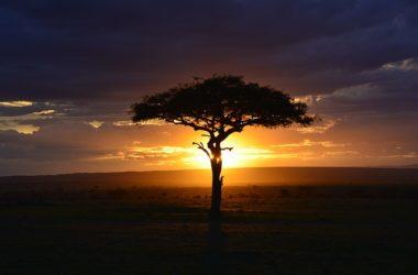 NAIVASHA Best Places To Visit