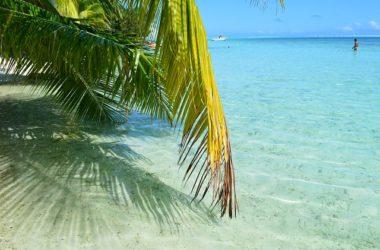 NEW GUNIEA Best Places To Visit