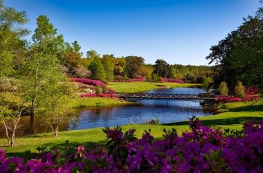 Alabama Best Places To Visit